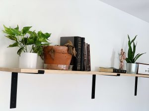 wall shelf with plants and books